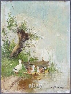 Ancien Tableau Canards Peinture Huile Antique Oil Painting Ölgemälde Dipinto