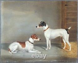 Ancien Tableau Jack Russells Peinture Huile Antique Oil Painting Ölgemälde