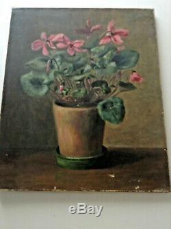 Ancien tableau de fleurs Post-Impressionniste Pot de Cyclamen Huile toile c1915