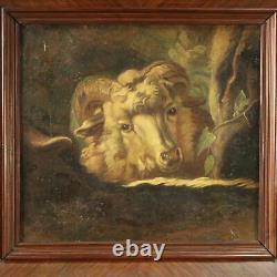 Ancien tableau peinture animal huile sur toile cadre mouton 700 18ème siècle