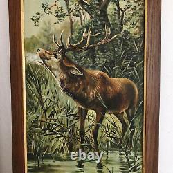 Huile Sur Toile Peinture Cerf Dans La Nature. Ancienne & Belle Paire De Tableaux