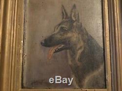 # Tableau Ancien École Française XIXe Peinture Huile / Toile chien berger