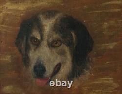Tableau Peinture Ancienne Huile Animal, Chien, Portrait
