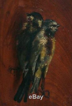Tableau Peinture Ancienne Huile Original Oiseaux, Chasse, Moineaux