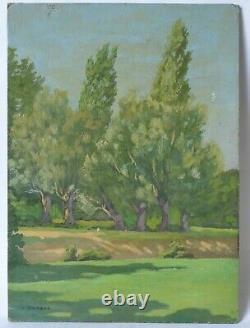 Tableau Peinture Ancienne Huile signé Paysage, Arbres, Prairie, Champs