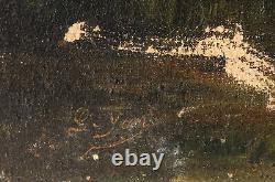 Tableau Peinture Ancienne Huile sur Toile signé, Paysage, Coucher Soleil, Arbre