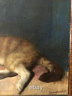 Tableau peinture huile sur toile cartonnée chat ancien avec cadre signée